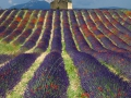 06-Provence